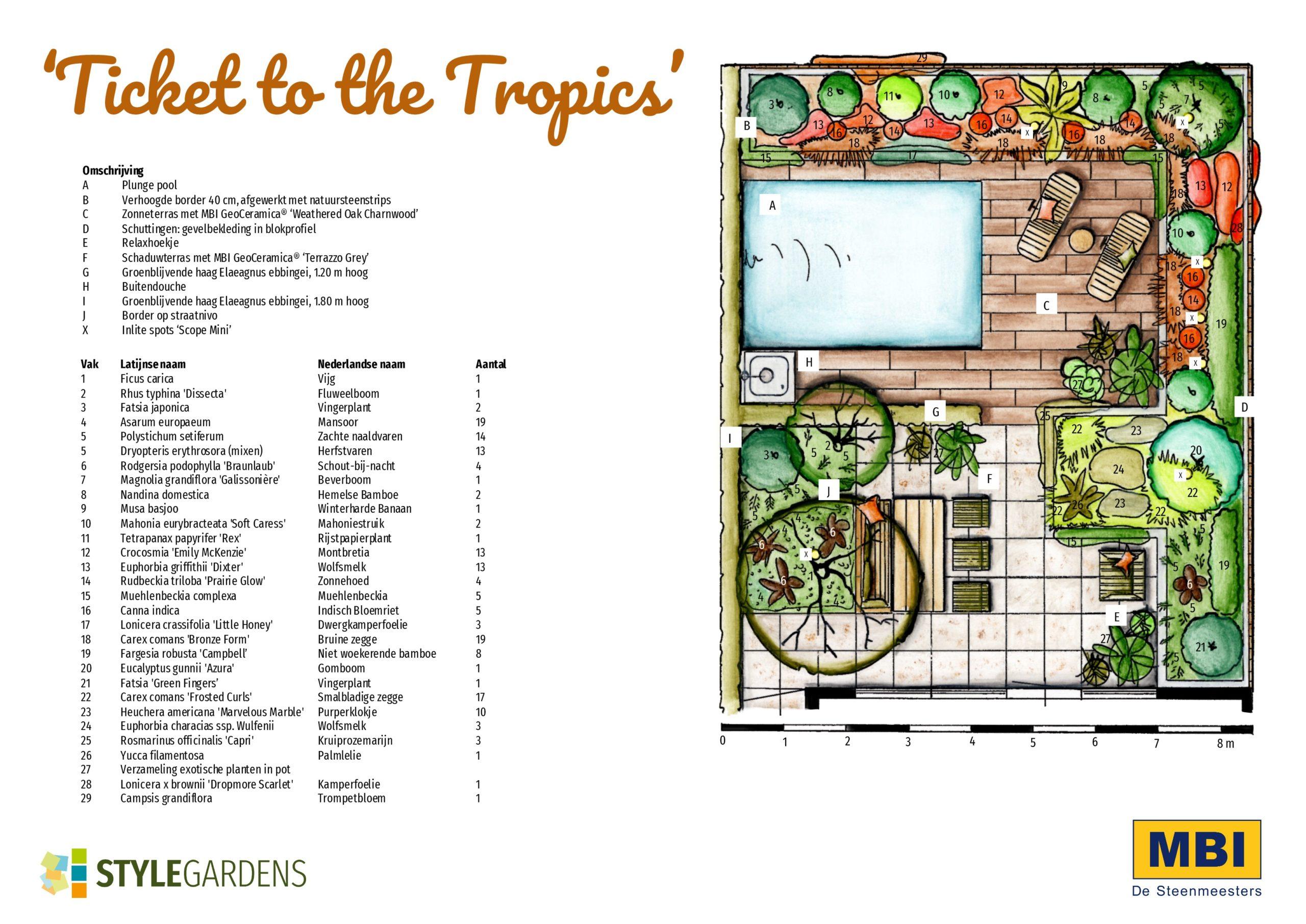 Tropische tuin, ontwerp
